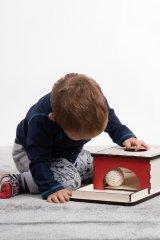 LINIT DESIGN Škatla razumevanja stalnosti predmeta