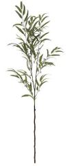 Shishi Az eukaliptusz zöld ága, magassága 170 cm