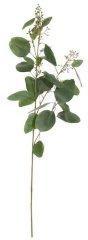Shishi Az eukaliptusz zöld ága, magassága 100 cm