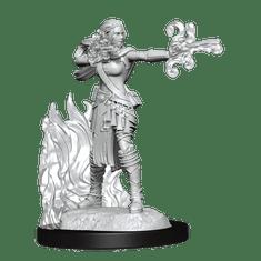 WizKids D&D Nolzur's Marvelous Miniatures: Multiclass Warlock & Sorcerer F