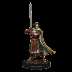 WizKids D&D Icons: Human Cleric Male Premium Miniature