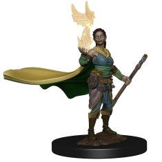 WizKids D&D Icons: Elf Female Druid