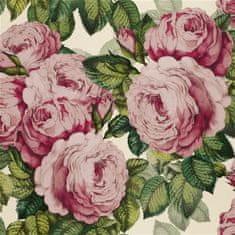 JOHN DERIAN Tapeta THE ROSE TUBEROSE, kolekcia PICTURE BOOK PAPERS