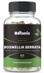 Botanic Boswellia 65% kyseliny boswelové 60 kapslí