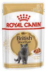 Royal Canin British Shorthair 12x85 g