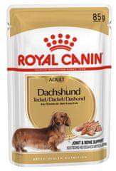 Royal Canin Dachshund pseća hrana, 12x85g