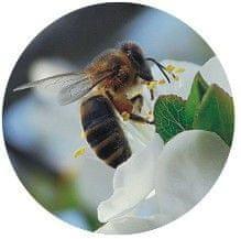 Makro Viečka zaváracie TO82 Včela na kvete, 10ks