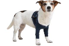 MPS Pooperačné ochranné oblečenie na obe predné nohy psa