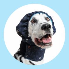 MPS Pooperačný kryt hlavy a uší pre psa - ochranná ušianka