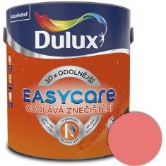 DULUX EasyCar vodní meloun 2,5l