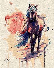 Kouzelný Art Malování podle čísel Kouzelný kůň