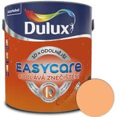 DULUX EasyCar mechanický pomeranč 2,5l