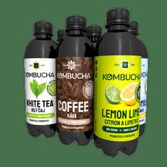 LONG LIFE BIOTEA Kombucha Mix1 0.5l - 6ks