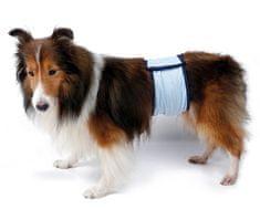 RECORD Pás proti značkovaniu pre psa