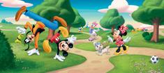 AG design Fototapeta Mickey Mouse FTDNH 5323