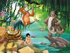 AG design Fototapeta Kniha džunglí FTDNXXL 5045